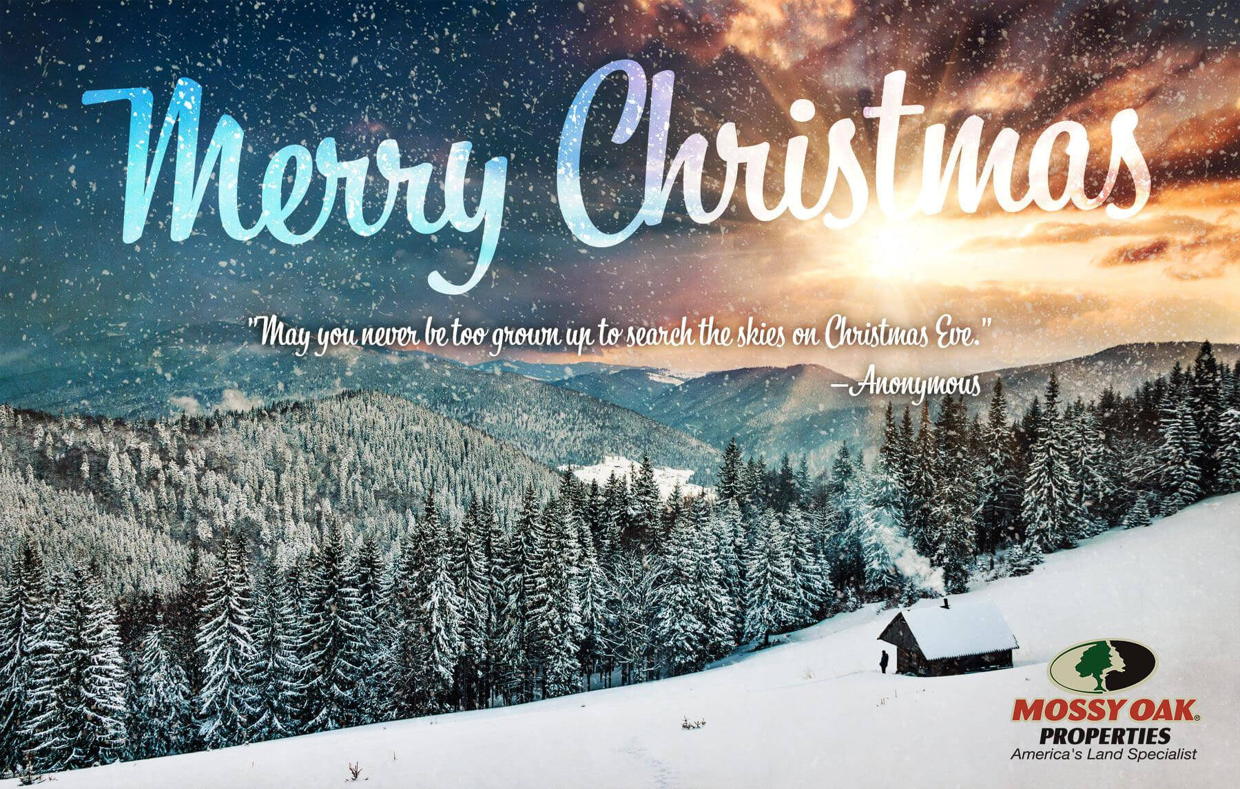 Wishing you all a great Christmas and Happy New Year!