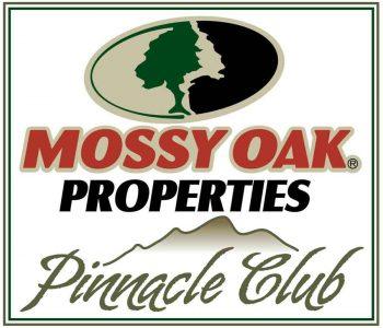 Pinnacle Club