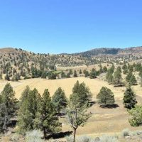 296 Acre Hay Ranch in Kimberly, OR
